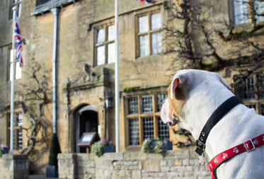 Dog friendly hotels in Lower Slaughter