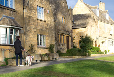Dog Friendly Slef Catering Cottages Cotswolds