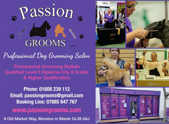 Passion Grooms