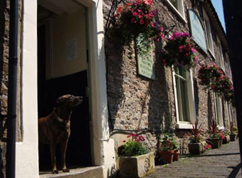 Dog Friendly Inns In South Cotswolds